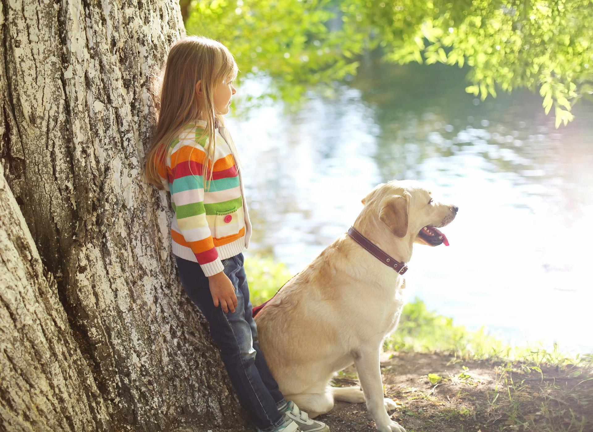 Dogs-and-Kids--Mein-Angebot-für-Sie--Kind-lehnt-am-Baum-mit-Hund