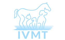 Dogs and Kids Partner IVMT