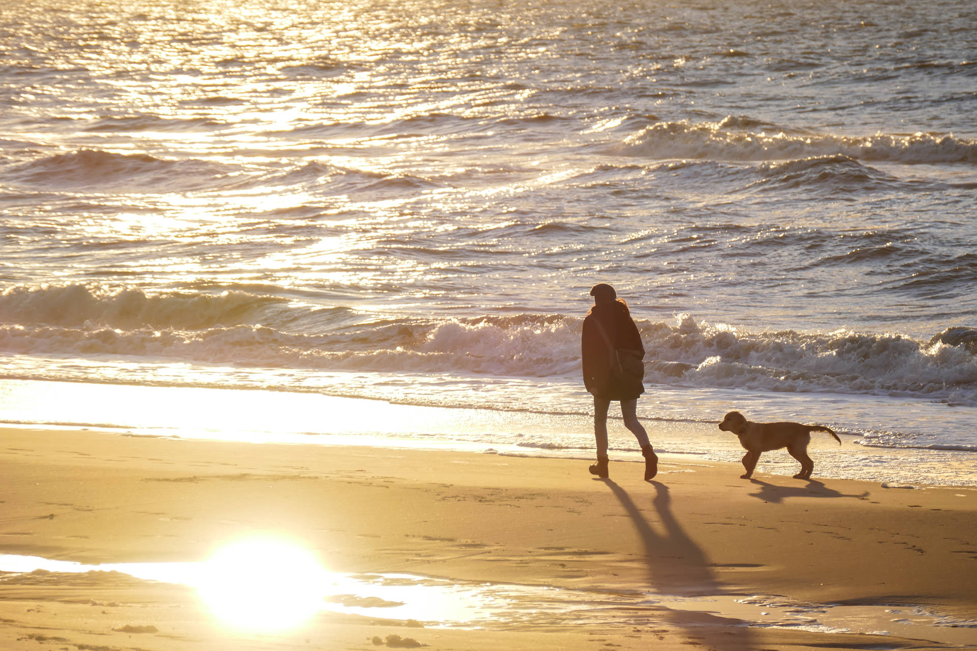 Dogs-and-Kids-Ueber-mich-Claudia-Peter-Plum-mit-Bodhi-im-Sonnenuntergang